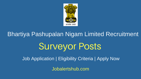 BPNL Surveyor Job Notification
