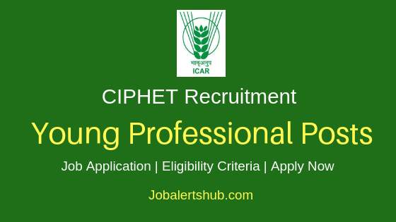 CIPHET Young Professional Job Notification
