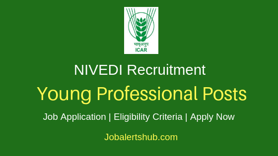 NIVEDI Young Professional Job Notification