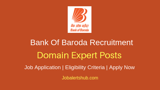 Bank Of Baroda Domain Expert Job Notification