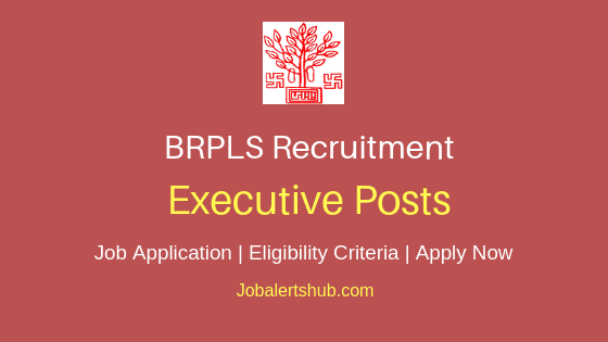 BRPLS Executive Job Notification