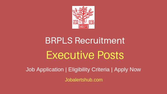 BRPLS Executive Job Notification