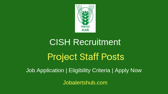 CISH Project Staff Job Notification