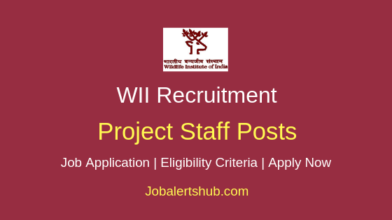 WII Project Staff Job Notification