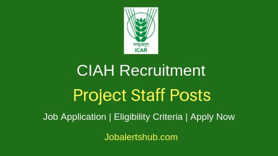 CIAH Project Staff Job Notification